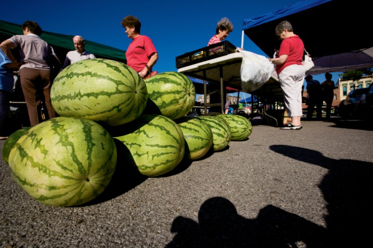 How to shop for watermelon