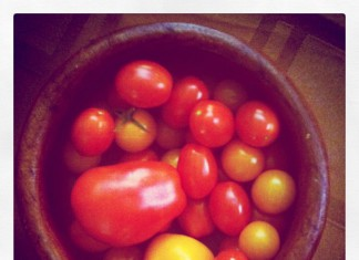 Cherry and grape and plum tomatoes