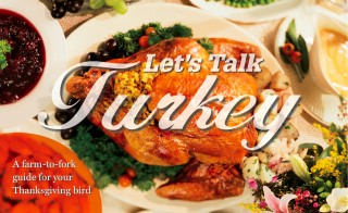Let&#039;s Talk Turkey digital magazine