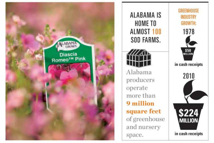 Greenhouse and nursery products are one of Alabama's top agriculture industries.