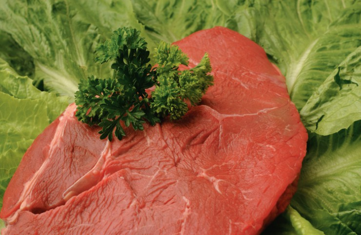 tennessee beef exports