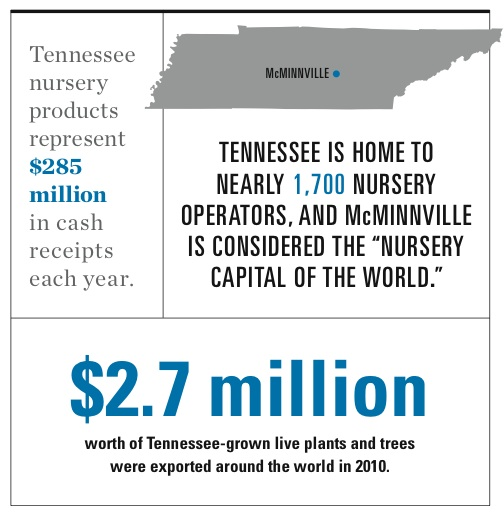 TN nursery industry infographic