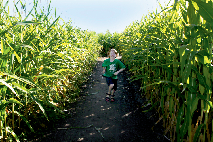 Corn Maze Kid