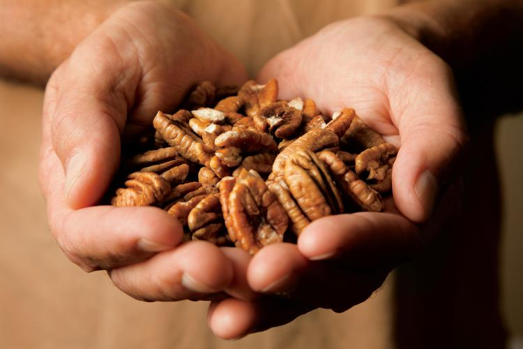 How Do You Say Pecan Mapping Food Dialect Trends Across The Us