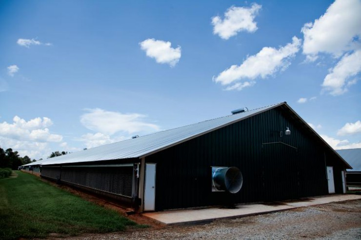 Environmentally Controlled Poultry House in Georgia