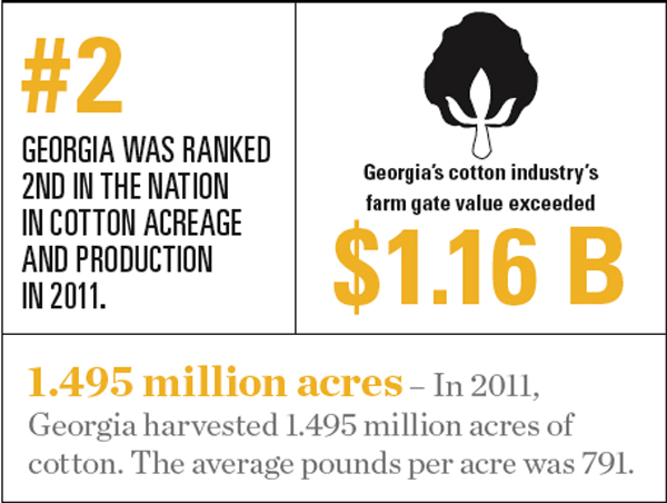 Georgia Cotton Facts and Statistics
