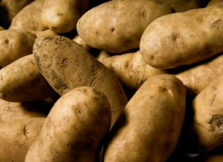 Maine Potatoes