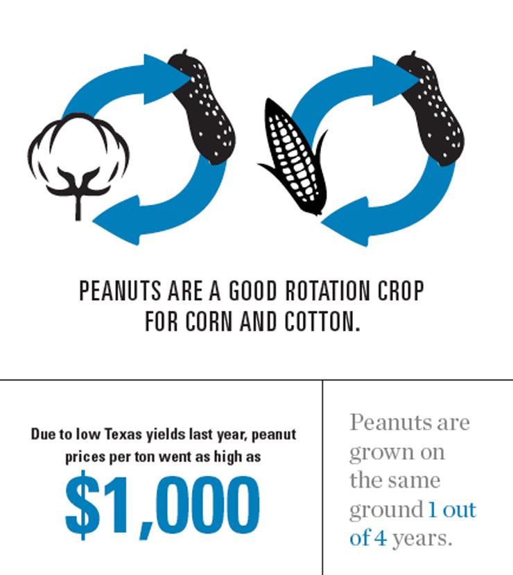 Mississippi Peanuts