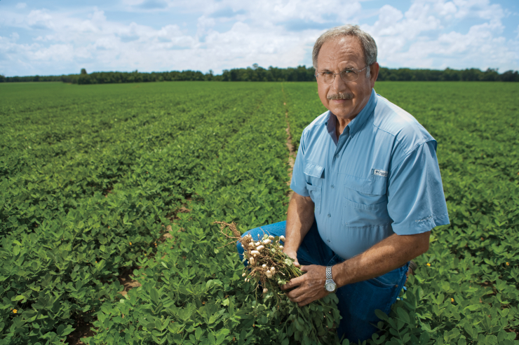 Alabama peanut farmer