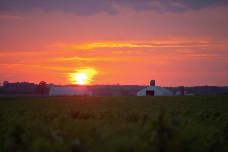 Missouri Agriculture