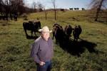 Missouri's Cattle Industry