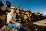 Virginia Forest Industry Focuses on Sustainability, Reforestation