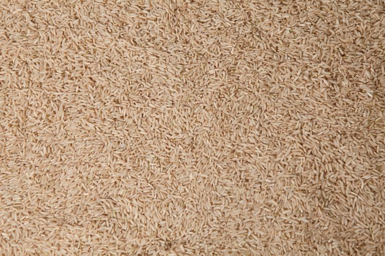 Arkansas Rice
