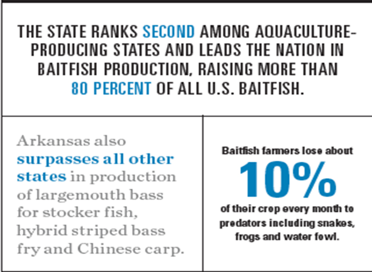 Arkansas Aquaculture Graphic