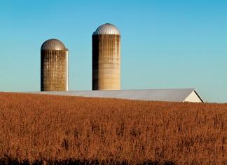 Virginia Agriculture