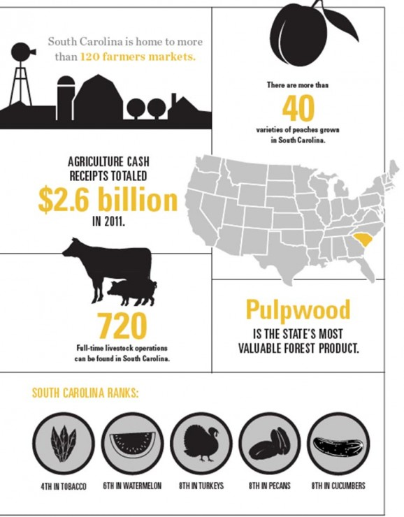 South Carolina Agriculture