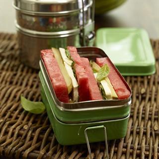 Watermelon Mozzarella Sandwich