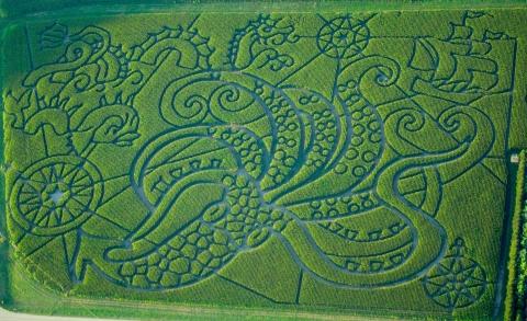kraken corn maze, treinen farm, wisconsin
