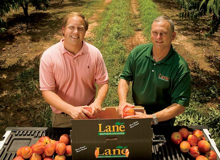 Lane Southern Orchards