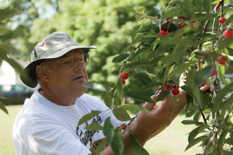 Yes, We Grow That! Specialty Crops Grown in Wisconsin