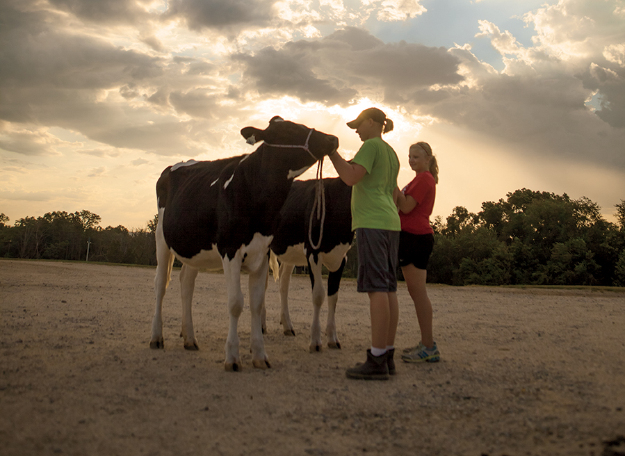 Dairy Industry is a Family Affair