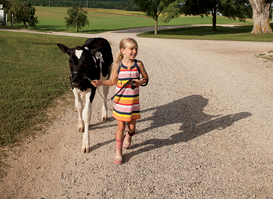 Wisconsin Dairy is a Family Affair