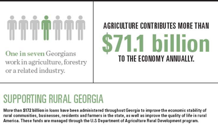 Georgia Agriculture