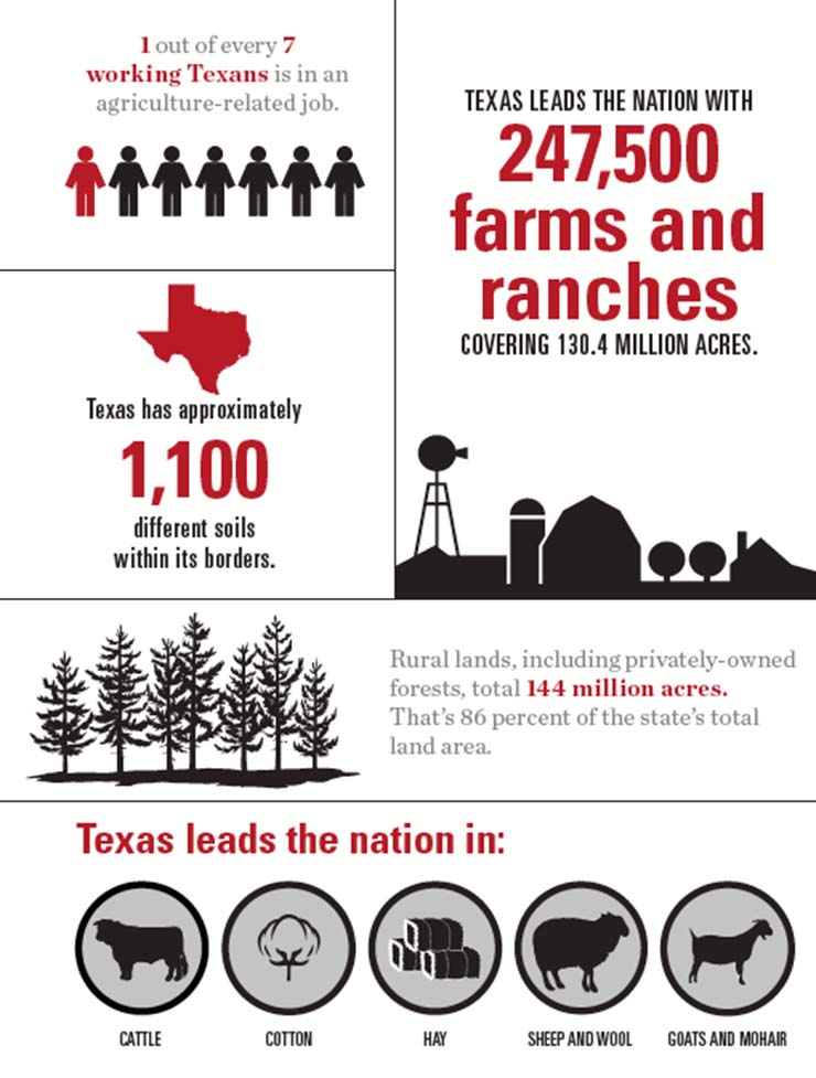 Texas Agriculture Overview