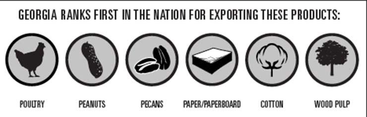 Georgia exports