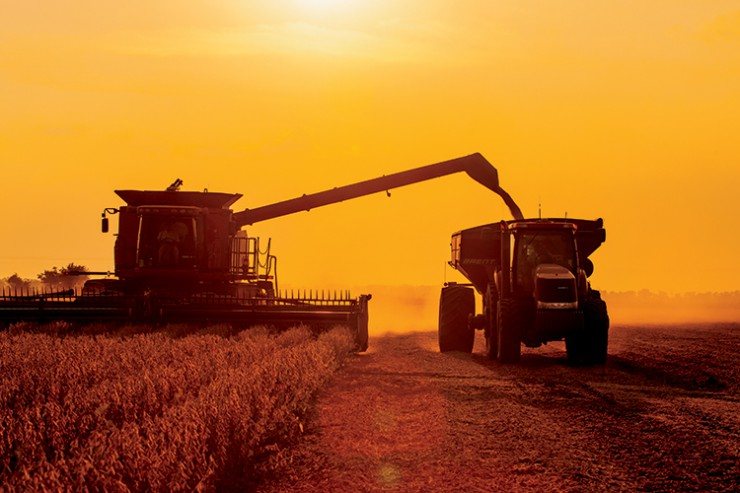 agricultural Technology Corn and Soybeans