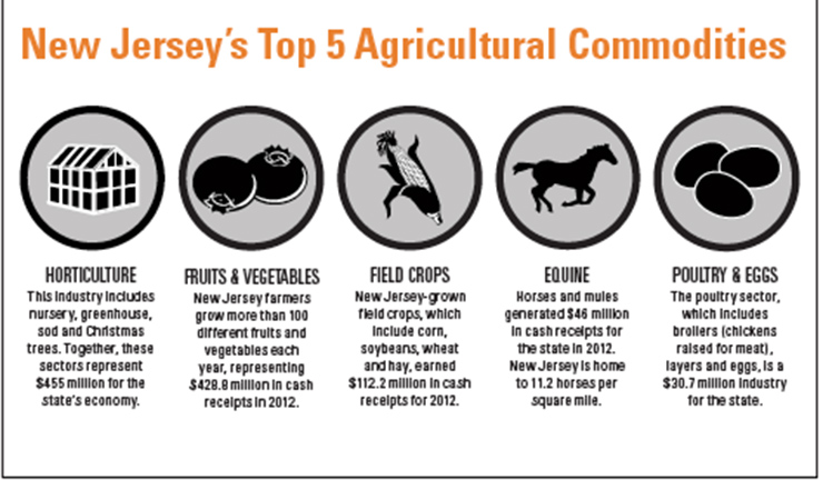 New Jersey Agriculture