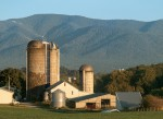 Virginia Agriculture: An Integral Industry