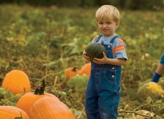 Child with pumpkin Direct Marketing in Virginia