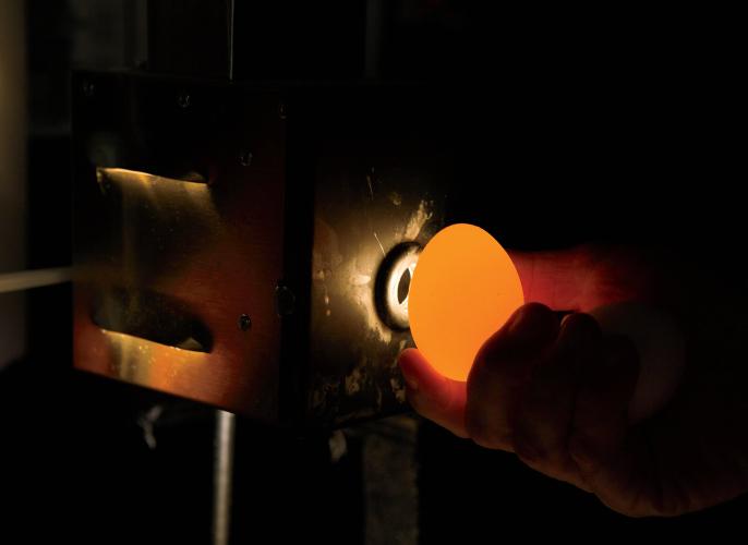 Trillium Farms egg candling