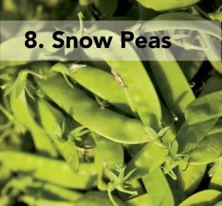 8. snow pea