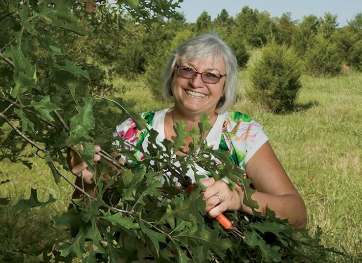 Donna Bemis Arkansas