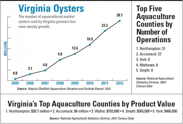 Virginia Aquaculture Chart
