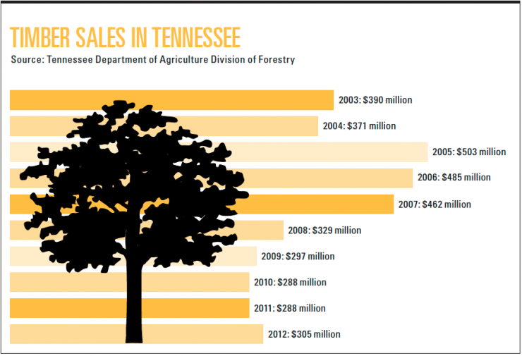 Tennessee Timber Infographic