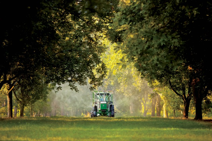 tractor in trees