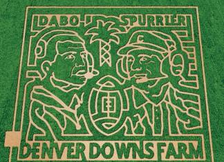 Denver Downs corn maze, South Carolina