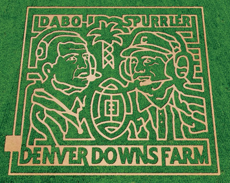 Denver Downs corn maze, South Carolina