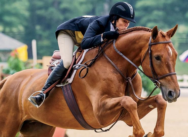 South Carolina horse jumping
