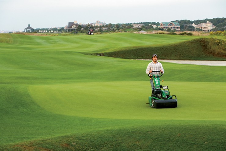 Feature 1: The Green Industry: Horticulture, Turfgrass and Lands