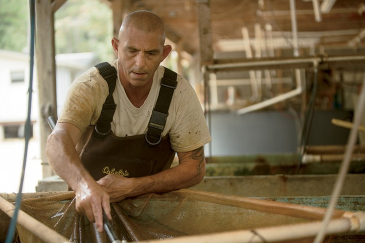 South Carolina Aquaculture, Southland Fisheries