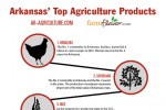 Arkansas Top Ten Ag Commodities [Infographic]
