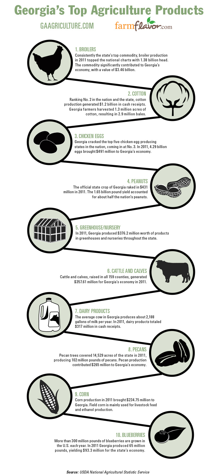 Georgia Top 10 Ag Commodities Infographic