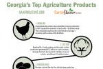 Georgia's Top Ten Ag Commodities [Infographic]