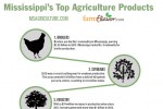 Mississippi's Top 10 Agricultural Commodities [Infographic]