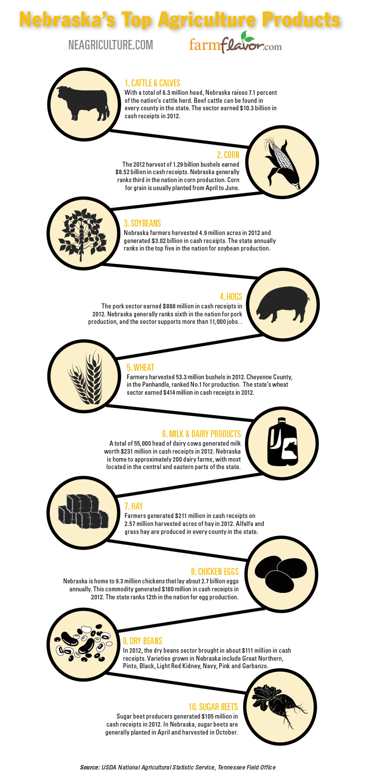 Nebraska Top 10 Ag Commodities infographic
