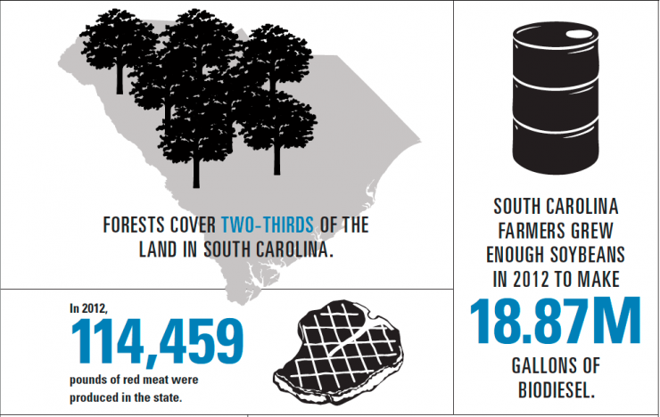 South Carolina Agriculture Infographic